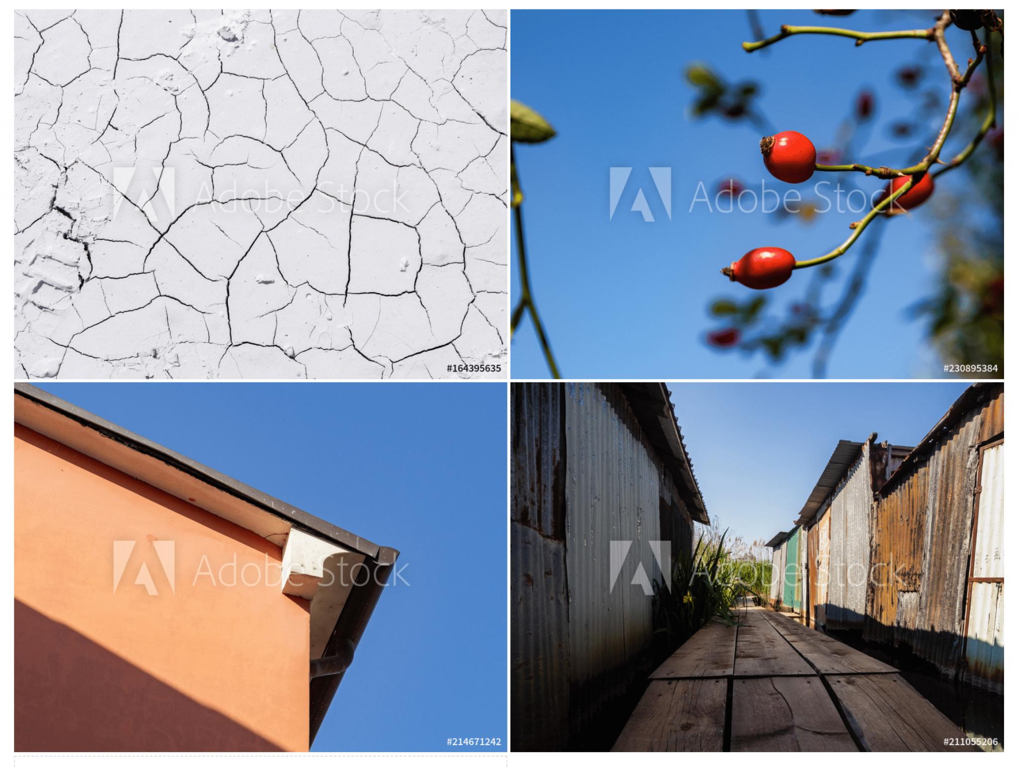 Adobe Portfolio - Adobe Stock